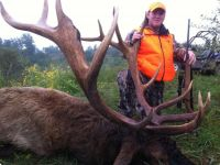 Kentucky Elk